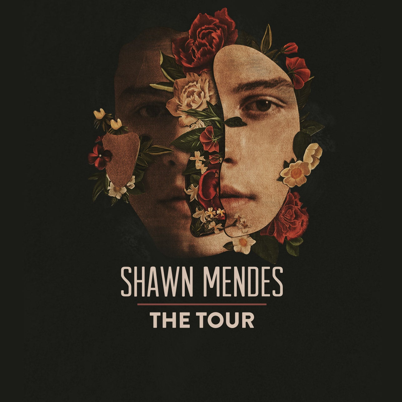 Shawn Mendes Xcel Energy Center